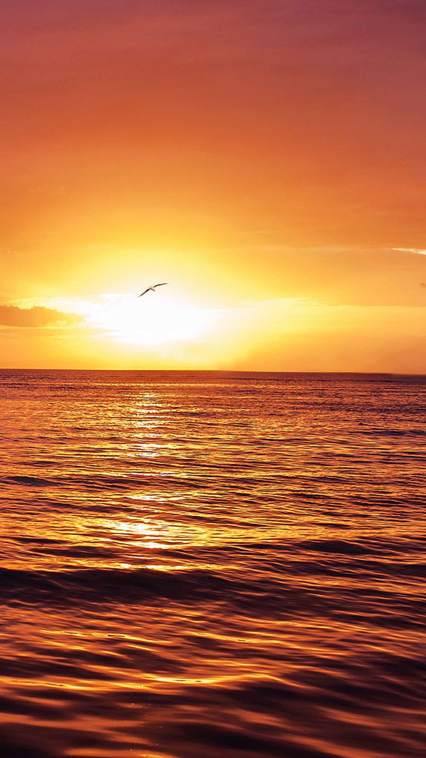 Sol E Mar Dicas Arte